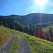 An der Unteren Hornbach Alpe mit Blick zur Hochstarzel.
