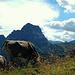 Hier oben lässt sich's ein Sommer lang trefflich leben. Den Kühen scheint der Widderstein wenig zu imponieren.