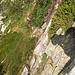 Rückblick auf den doch recht steilen Aufstiegsweg (man sieht den Weg nicht wirklich, er führt über das gelbe Grasstück und dann nach links auf das Geröllfeld zu)