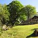 Sehr schön ausgebautes Rustico mit englischem Rasen auf ca. 1400m