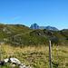 An der Oberen Geißbühelalpe mit Blick zum Widderstein.