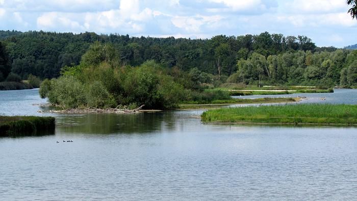 Ein Bild, das draußen, Wasser, See, Gras enthält.  Automatisch generierte Beschreibung