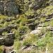 Über diese heikle Schrofenpassage wird die erste Steilstufe abgestiegen...