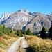 Aufstieg zum Passo del Scengio