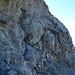 Mensch im Fels ... kurz oberhalb der gebogenen Leiter (vorheriges Foto)