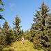Durchs Gras zum Grasleitenkopf ;-)