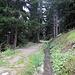 Bisse du Levron<br />Hier wurde bereits in früherer Zeit Wasser aus dem Gebiet  um den Mont Fort nach Levron geführt.