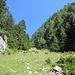 """Rückblick auf den Abstiegsweg nach Champex d´en Bas über die """"La Dyure"""""""