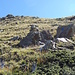 Aufstieg durch das Weidegelände Richtung Lägunde Tschuggo