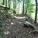 Im Seerenwald hat es Riesen, die mit Steinen um sich werfen.