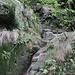 Einstieg zur Rotkehlchenstiege