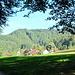 ...von Tüfenbach ( 698m )