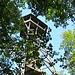 Am Aussichtsturm Hochwacht