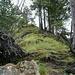 Die letzten Meter zum Gipfel des Glaubenstocks (1690m).
