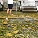 Wassertretstelle in Wasserauen, eine Wohltat nach der Tour!
