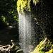der Moosbewuchs sorgt für einen feinen Wasserfall, eine ideale Dusche