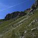 Im Tal der verzauberten Waldschrate / Nella valle delle fantasme incantate della natura