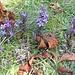 Auch Blumen sind ja mit etwas beschäftigt, nämlich damit, zu blühen. Aber ist verdorren... eine Tätigkeit? Tun die Blätter etwas oder haben sie damit aufgehört?