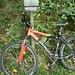 Lascio la bici,proseguo per il sentiero