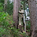 Skulpturen im Wald