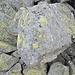 Das typische grobblockige Geröll (Granit), welches relativ stabil und gut begehbar ist mit den typischen Landkartenflechten.