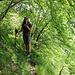 und ab in den Wald