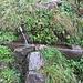 Wasserstelle auf dem Abstieg