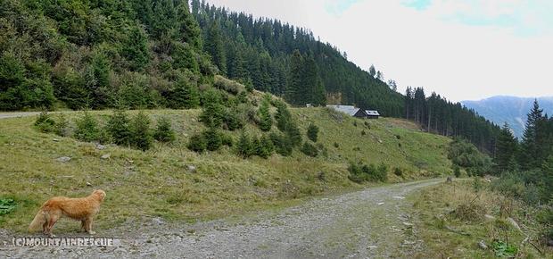 Vorbei an der Lackneralm geht es zurück ins Tal