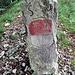 Grenzschlängeln zwischen Solothurn und Baselland