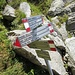 Piegata dalla valanga all'Alpe Caurga