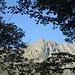 Incombono sempre le stupende rocce dei Gridoni, oggetto di continuo stupore ed ammirazione...