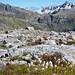 Auf dem Gletscherpfad - gut auszumachen der Cristallina rechts