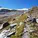 Nordwestliche Seitenmoräne mit dem Gletscherpfad