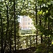 La Reggia di Colorno dalla galleria di carpini del giardino.