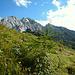 Weiter geht's über eine herrliche Alplandschaft mit alpinem Hintergrund.