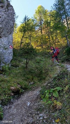 Kurz unter dem Bärensattel steilt der Weg noch mehr auf...