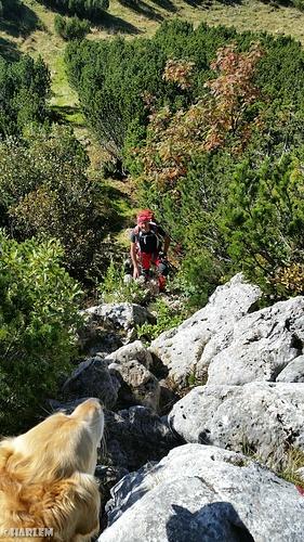 Abstieg in einen kleinen Sattel und wieder den Berg hinauf....