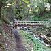 Brücke unterhalb Pinsec