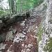 Oberhalb von Nasseel auf ~1150m - schön angelegter Weg (Schweizer Wertarbeit)