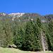 Hoch oben das Gipfelkreuz der Haglere