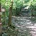 ....che conduce al normale sentiero per il Monte Tre Croci e vi arriva da dx