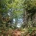 Eine Nebenabzweigung, die zu einer Höhle und Kletterfelsen führt.
