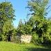Ruine Nellenburg I