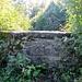 Ruine Nellenburg IV