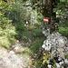 Abstieg über den Karawanken Wanderweg zum Bodenbauer