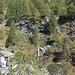 dal sentiero si vede già la scala sulla sponda sinistra del Ri della Cròsa (in alto a destra); a sinistra il punto di passaggio del rio