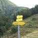 Hinten der Sattel zwischen Heuberg und Plessenberg. Vorne sieht man noch den Weg, der über den Sattel zum Kienberg führt.