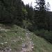 Unten trifft man auf einen guten Weg, der ins Kuhkar führt / in giù prendiamo il bel sentiero che porta nel Kuhkar