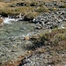 Einer der vielen kleinen Zuflüsse zur Clemgia