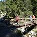 ... über die Bruchi-Brücke ...
